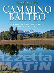 Camminare lento in Valle d'Aosta: una web app per scoprire il Cammino Balteo