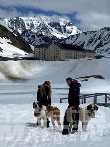 Televisione: domenica 13  Valle d'Aosta protagonista su Rai 1, Rete 4 e La 7