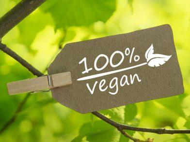 «Molto più che un'opinione» : dall'Inghilterra all'Italia la sentenza che sancisce il diritto alla dieta vegana