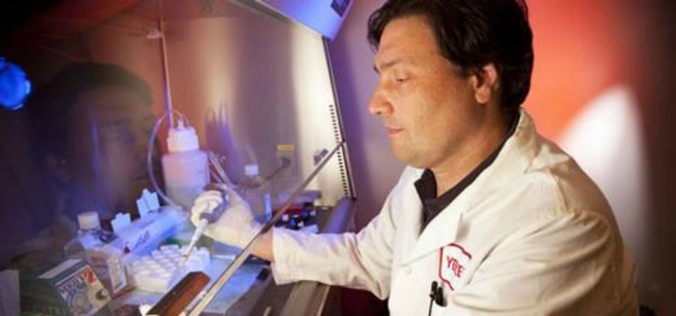 Il virologo Silvestri: «La ritirata del Covid continua»