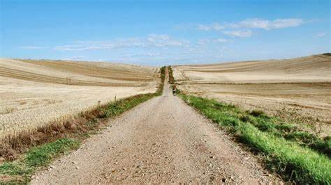 Riparte il cammino di Santiago, faticoso pellegrinaggio che gronda di umanesimo